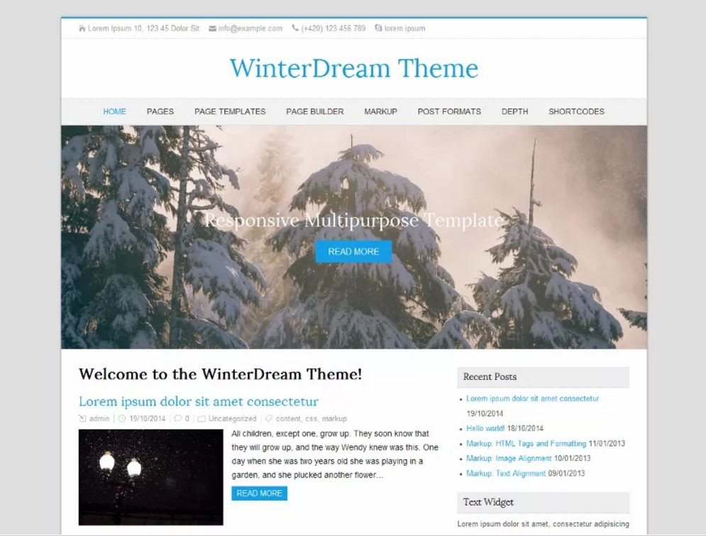 WinterDream. Шаблон для сайтов природной тематики на WordPress