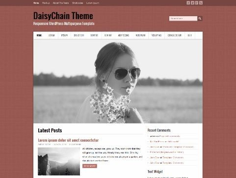 DaisyChain. Шаблон для фотоблога на WordPress.